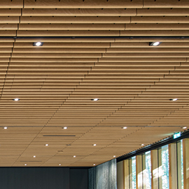 Ceiling Grill Base-line
